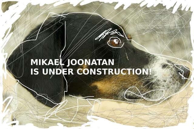 Koiran Profiili Construction Piirretty 4.jpg